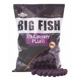 Бойли тонучі Big Fish Mulberry & Plum - 20mm Boilie 5kg