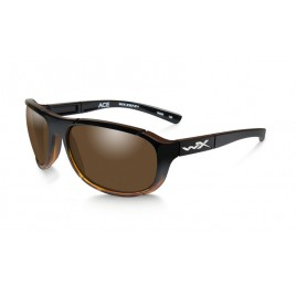 ACE Polarized Bronze Gloss Tortoise Fade Frame - солнцезащитные очки